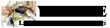 logo-venerie