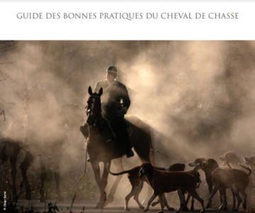 guide-chasse